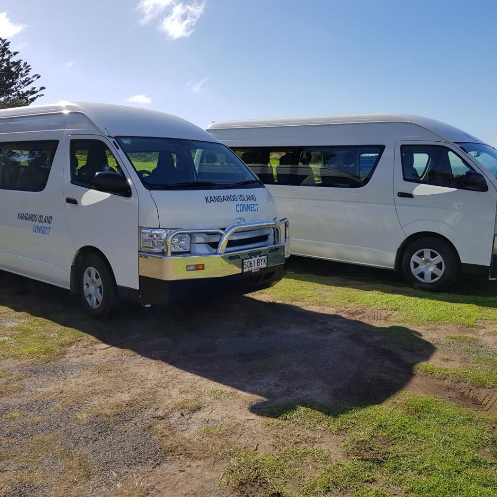 minibuses-1024x1024